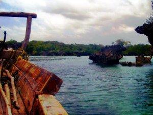 Mangrovie - Zanzibar