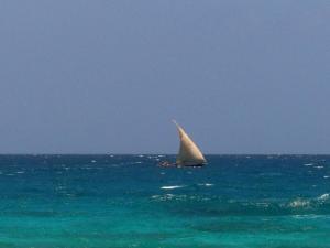 Imbarcazione tipica swahili - Zanzibar