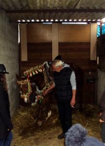 Il cavallo di Fausto, preparato per la Sartiglia 2010