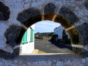 Lanzarote, azienda agricola