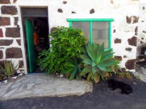 Lanzarote, la stanza per la degustazione dei vini