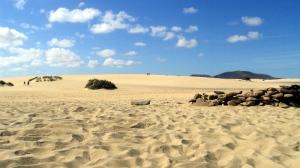 dune - corralejo